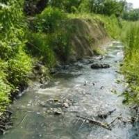 Проблеми використання водних ресурсів потребують негайного розв'язання