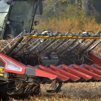 На Львівщині завершується обмолот ранніх зернових
