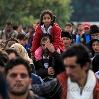 Потік біженців не припиняється
