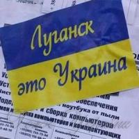 На Луганщині українські військові...
