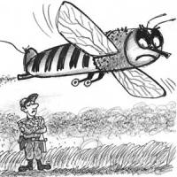 Хто відповість за загибель бджіл?