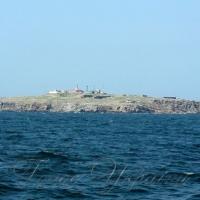 Геологи почали пошук нафти й газу в районі острова Зміїний