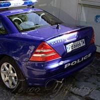 Поліція почала привчати до святкової толерантності