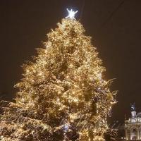 Напередодні свята Миколая у Львові