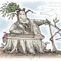 Чиновник «помилився» - землю втрачено