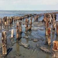 «Мертве море» даруватиме здоров'я
