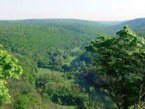 Природний заповідник «Медобори» - перлина Тернопільщини