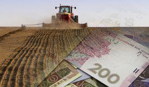 Аграріям Сумської області обіцяють вагому підтримку