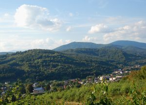 Чотири пріоритети для Карпатського регіону