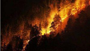 «Мода» на спалювання — небезпечна