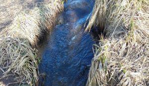 Води в колодязях поменшає
