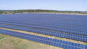 Поблизу села Калинівка побудують СЕС потужністю понад 13 МВт