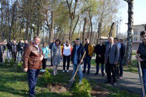 У Немішаївському агротехнічному коледжі вирощують енергетичну вербу