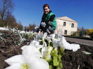 Підприємці долучаються до озеленення