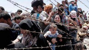 Біженці у Боснії і Герцеговині знову бунтують