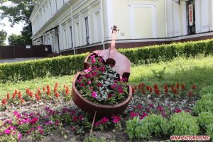 На заквітчання та озеленення вулиць Житомира витратили 489 тис. гривень