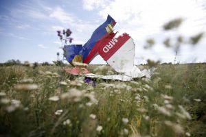 У МЗС анонсували висунення підозр причетним до катастрофи МН17