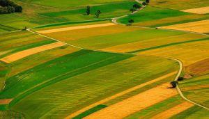 Ферми Полтавщини хочуть пільгові кредити