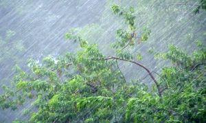 Руйнівні зливи