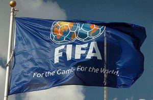 ФІФА каратиме  за прояви расизму
