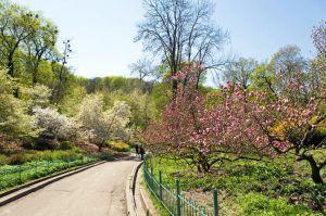 У Києві більшає парків і скверів