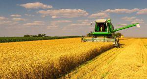 Наша пшениця завойовує Еквадор