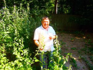 Валерій Броварський: знаний вчений-бджоляр і талановитий наставник