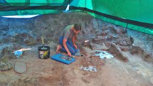 Золоті скарби скіфів знову дістали з-під землі