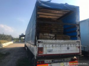 У Закарпатській області припинено схему незаконного вивезення деревини