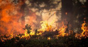 Серпень у Греції. Спека. Пожежі. Випробування
