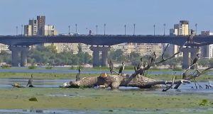 Дніпро може врятувати лише комплексна програма