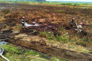 У Чернігівській області знову горять торфовища