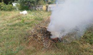 Чернігівщина: Забруднив повітря — відповідай