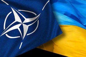 Перед НАТО і Україною гостро стоять питання безпекового характеру