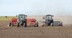 На Дніпропетровщині посіяли озимі зернові