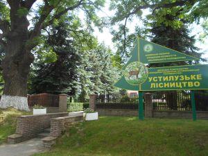 У Володимир-Волинському районі відсудили ліс