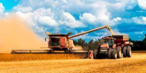 Украинские аграрии и сеют, и собирают