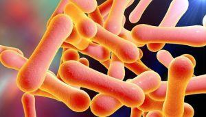 У столиці підтверджено випадок захворювання на дифтерію