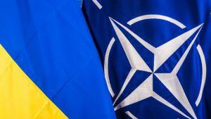 Нормалізація відносин з РФ неможлива без дотримання нею міжнародного права