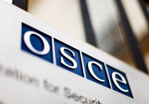 ОБСЄ має пояснити поїздку російського депутата до Золотого
