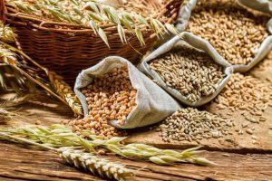 Експорт зернових сягнув 20 млн тонн