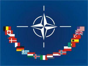 Столтенберг та Меркель не поділяють  позицію Макрона щодо НАТО