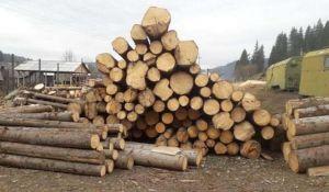 На Буковині незаконно експортували деревину