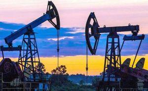 Власне видобування газу повинно бути основним пріоритетом уряду