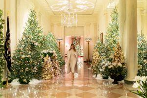 В Белом доме установили рождественскую елку