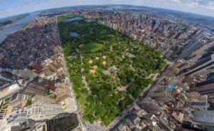 В Киеве хотят создать аналог Cентрал-парка Нью-Йорка