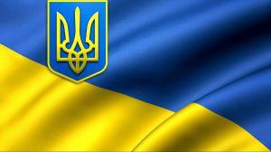 Про внесення змін до Закону України «Про дорожній рух» щодо організації дорожнього руху для осіб, які рухаються в кріслах колісних