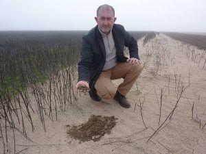 Час вигрібати пісок
