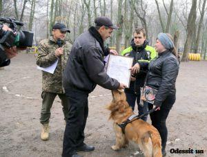 Пес Амиго поможет незрячей учительнице из Одессы