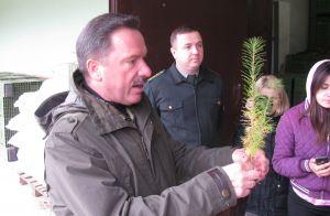 Саженцы из Львовской области будут экспортировать в Европу